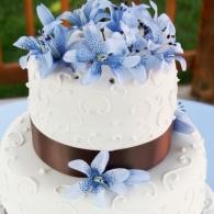Torta-Orchidea